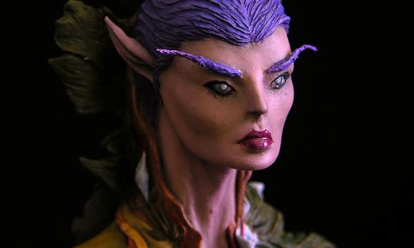 Elf Warrioress